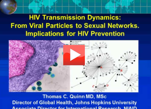 HIV Transmission Dynamics: From Viral Particles to Sexual Networks. Implications for HIV Prevention